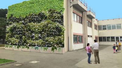 Parete verdi: Un progetto ecologico il 5 scuole fiorentine